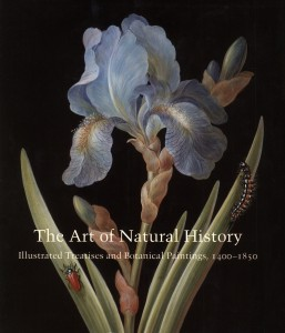 Flora illustrata