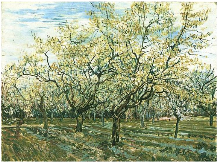 'The White Orchard', April 1888