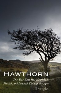 Hawthorn by Bill Vaughn