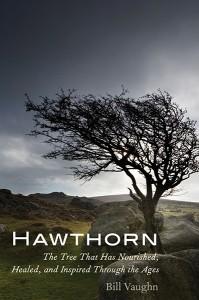 Hawthorn by Bill Vaughn