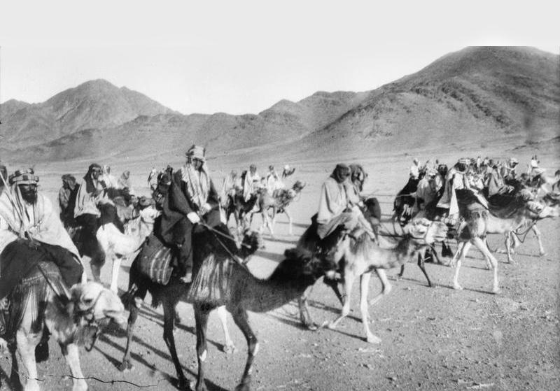 Arab Revolt